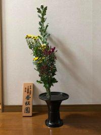 今月の花:2020年11月