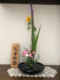 今月のお花:7月10日